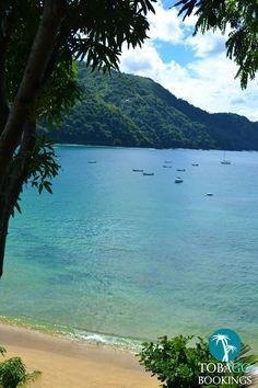 Castara Bay, Tobago