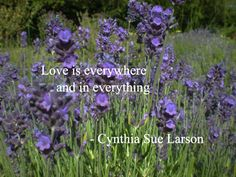 """""""Love is everywhere and in everything"""" - Cynthia Sue Larson"""