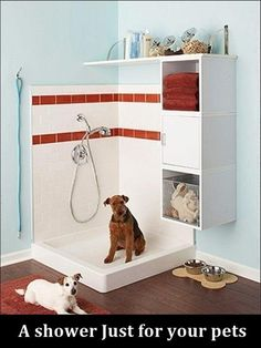 Awesome idea for dogs... But is it bad that I am thinking this is a good way to get my toddler clean too? Lol