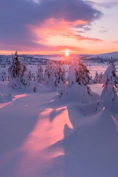 sunsets are relaxing, – Winterbilder Winter Sunset, Winter Scenery, Snow Photography, Landscape Photography, All Nature, Nature Images, Flowers Nature, Snow Scenes, Winter Photos