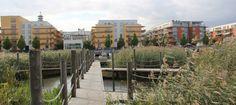 - very good, boardwalk, planting / crossing