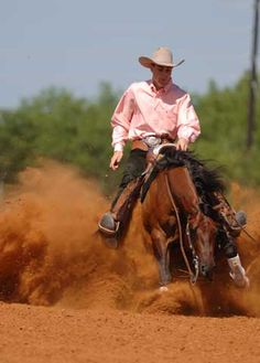 Einsteins Revolution - Champion Reining Horse
