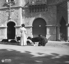 https://flic.kr/p/EahYne | Cabrer munyin una cabra davant la casa de les Punxes, Barcelona, 1910. Fons: Antoni Carbonell i Fita (AFCEC_CARBONELL_D_3638)