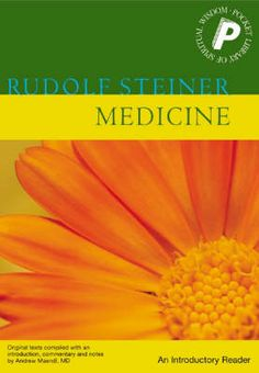 Buy Medicine by Rudolf Steiner at Mighty Ape NZ. Rudolf Steiner, the often undervalued, multifaceted genius of modern times, contributed much to the regeneration of culture. Scientific Writing, Case Histories, Rudolf Steiner, Waldorf Education, Holistic Approach, Human Nature, Economics, How To Know, Philosophy
