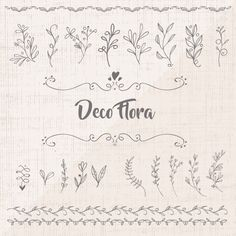 Decorative floral elements collection Free Vector