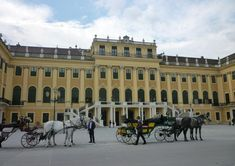 Check out the best tours and activities to experience Schönbrunn Palace (Schloss Schönbrunn). Don't miss out on great deals for things to do on your trip to Vienna! Reserve your spot today and pay when you're ready for thousands of tours on Viator. Danube River Cruise, Things To Do, Good Things, Tour Tickets, Vienna, Great Deals, Attraction, Palace, Street View