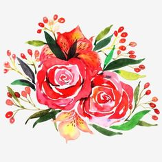 Red Flowers Watercolor Flower Flowers Illustration Plant PNG and PSD Hd Flowers, Leaf Flowers, Flower Petals, Colorful Flowers, Beautiful Flowers, Watercolor Flower Background, Watercolor Rose, Plant Illustration, Botanical Illustration