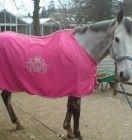 Fleece Rug Equestrian, Horses, Rugs, Animals, Farmhouse Rugs, Animales, Animaux, Horseback Riding, Animal