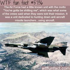 You've gotta be shitting me - WTF fun facts