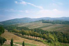 tuscany italy | Walking Photos of Tuscany and Chianti Vineyards and Winery in Italy