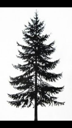 Pine tree tattoo for my brother