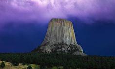¿Arboles de 60km? No hay bosques en la tierra plana - http://www.misterioyconspiracion.com/arboles-60km-no-bosques-la-tierra-plana/