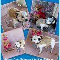 http://poshpoochdesignsdogclothes.blogspot.com/2016/10/maxs-dog-harness-crochet-pattern-and.html
