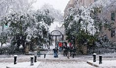 University of Ga snow covered