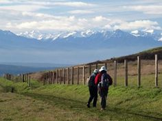 Hikes for kids (Ebey's landing)