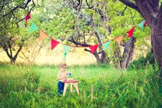 This is such a cute 1st birthday photo shoot! I really, REALLY want to get pics done!