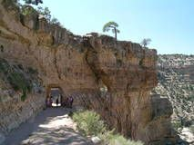 The Bright Angel Trail is considered the park's premier hiking trail. Well maintained, graded for stock, with regular drinking water and covered rest-. Bright Angel Trail, Vacation Places, Hiking Trails, Mount Rushmore, Arizona, Outdoors, Camping, Memories, Mountains