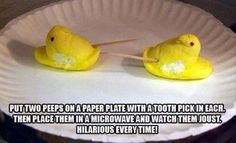 People tend to have very strong opinions about Peeps, and more often than not, the Easter candy staple can be pretty divisive. These 11 funny Peeps memes aren't afraid to go there, and then some. Take a scroll through these hilarious memes that make… Carrie, Drake, Timmy Time, Just In Case, Just For You, Funny Quotes, Funny Memes, Funny Easter Memes, Funny Pranks For Kids