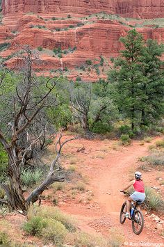 The mountain biking trail system in Sedona is extensive. This rider enjoys biking on the trails in the Bell Rock area, Red Rock Country, Coconino N.F., Sedona, Arizona, USA