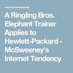 A Ringling Bros. Elephant Trainer Applies to Hewlett-Packard - McSweeney's Internet Tendency