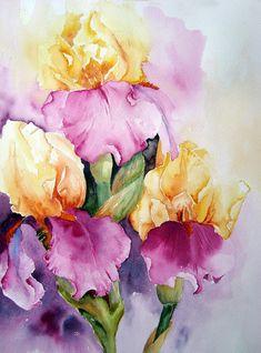 Irises, painting by artist Yvonne Harry. Art Aquarelle, Watercolour Painting, Watercolor Flowers, Painting & Drawing, Watercolors, Watercolour Techniques, Iris Art, Beautiful Artwork, Painting Inspiration