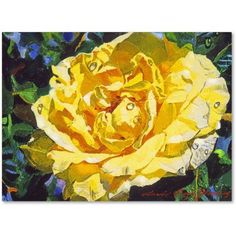 Trademark Fine Art Golden Rain Canvas Art by David Lloyd Glover, Size: 14 x 19, Multicolor