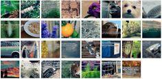 Übersichtsbild. Bilder Galerie mit Weisheiten, Zitate, Sprichwörter und Sprüche Juli 2015