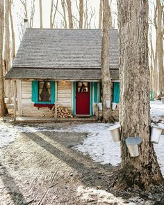Lovely old cabin in the woods with red door and turquoise trim.