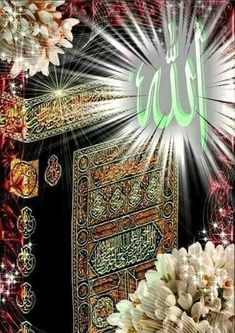 Islamic Websites Info in English Other Languages Allah God, Allah Islam, Islam Quran, Beautiful Names Of Allah, Beautiful Birds, Lion Pictures, Art Pictures, Islamic World, Islamic Art