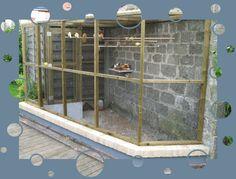kanaries kweken in kooi | ... om zo de jonge kanaries te kunnen scheiden van de oudere kweekvogels