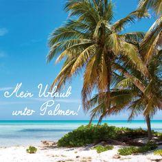 Mein Urlaub unter Palmen! #justaway #travel #quotes #sun #beach #urlaub #reisen #justawaycom