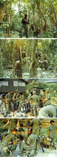 the bush 1972 1972 Army Vietnam  BCO3RD21ST196TH danang
