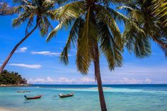 Thinking of where to stay in Phi Phi Islands? Here are a few of our recommendations on the best places to stay close to the nightlife all the way to...