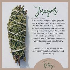 Are you familiar with Juniper? - Benefits of Juniper: creates safe protection invites positive energy provides a healing space removes negative energy - Click the link in our bio to take our smudging quiz today - Smudging Prayer, Sage Smudging, Wiccan, Witchcraft, Magick Book, Cedar Smudge, Spiritual Awareness, Spiritual Wellness, Herbal Magic