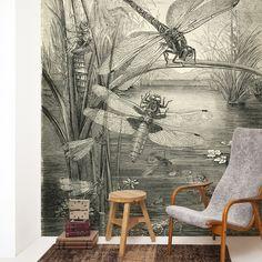 Wallpaper on rolls | Naturalis Originals - Behang, muurposters, murals en decoratie op basis van de natuurhistorische collectie van Naturalis