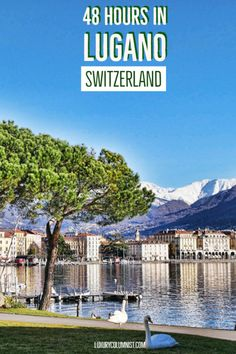 At the base of the Swiss Alps overlooking Lake Lugano, Lugano benefits from a micro-climate. Here are the best things to do in Lugano, Switzerland Europe Travel Tips, Spain Travel, France Travel, Italy Travel, Places To Travel, Places To Go, Italy Trip, Italy Vacation, Travel Destinations