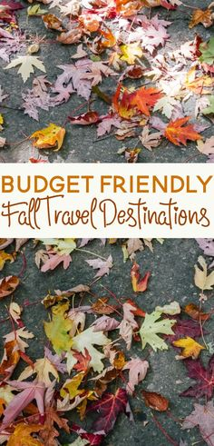 Do you enjoy traveling? Why not consider a vacation in the fall! Here are a few budget friendly fall travel ideas for you to consider.