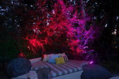Light up your yard sustainably and instantly with our LED Outdoor Lights this Christmas! http://www.lasersandlights.com