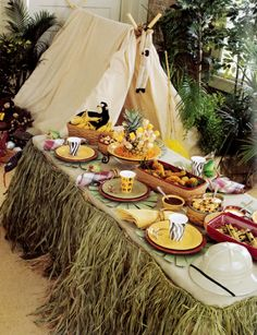 Host a Zoo-themed party with Longaberger. I love the tent inside.