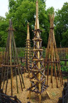 .Unusual plant supports made of wood   Flickr - Photo Sharing! Potager Garden, Garden Trellis, Garden Beds, Garden Art, Wood Trellis, Obelisk Trellis, Diy Garden, Tomato Trellis, Tomato Cage