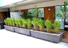 Reinforced concrete Flower pot SÄBY By Nola Industrier Metal Trellis, Wooden Trellis, Concrete Planter Boxes, Flower Pots, Flowers, Reinforced Concrete, Creepers, Landscape Design, Vines