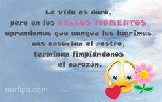 La vida es dura, pero en los bellos momentos aprendemos que aunque las lágrimas…