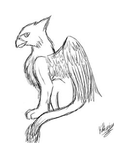 griffin whats your favorite mythical creature Greek Mythical Creatures, Mystical Creatures Drawings, Creature Drawings, Mythological Creatures, Magical Creatures, Fantasy Creatures, Mystical Animals, Creatures 3, Animal Sketches Easy