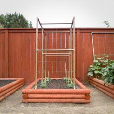 DIY Raised Bed Vegetable Garden for under $24 each « Modern Bushman