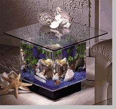 Aquarium Center Table | Appartment | Pinterest | Center Table, Aquariums  And DIY Furniture