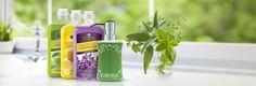 Lemon Brite 3–pack and Soap Dispenser - Melaleuca