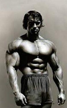 Edward Snowden, Wayne Rooney, Arnold Schwarzenegger, Bibliophile, Bodybuilding, Original Paintings, Statue, Prints, Life