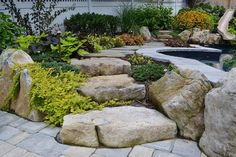 want to see an awesome pool and spa in a small backyard, landscape, outdoor living, ponds water features, pool designs, spas, Moss rock boulder steps and landscaping