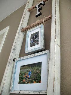 Old Ladder-maybe I could do this in my living room corner instead of the old Ficus tree?