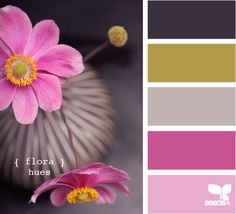 Flora Hues Design Seeds by jeanie Scheme Color, Colour Schemes, Color Combos, Color Patterns, Design Seeds, Palette Deco, Color Balance, Color Swatches, Color Pallets